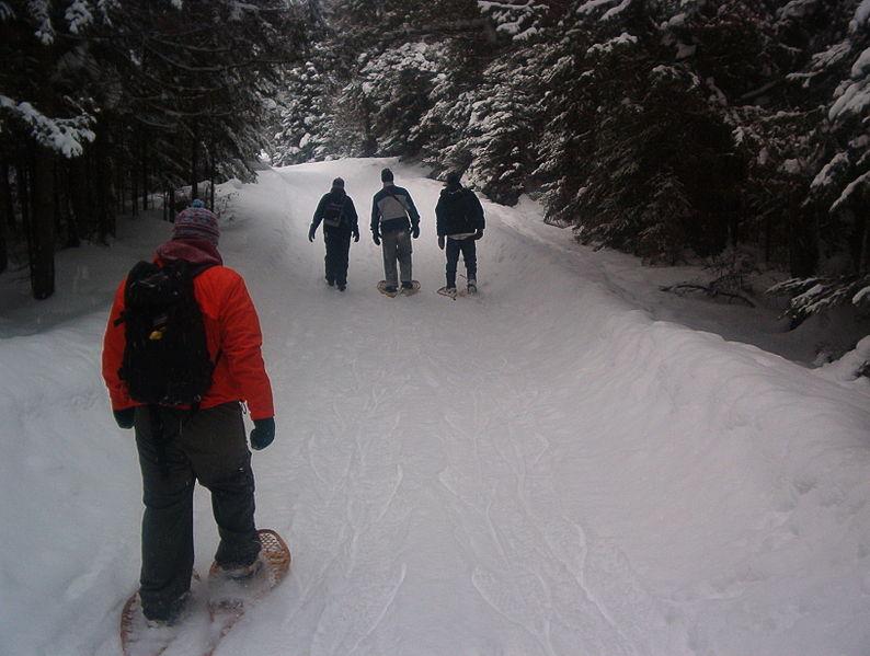 snowshoers