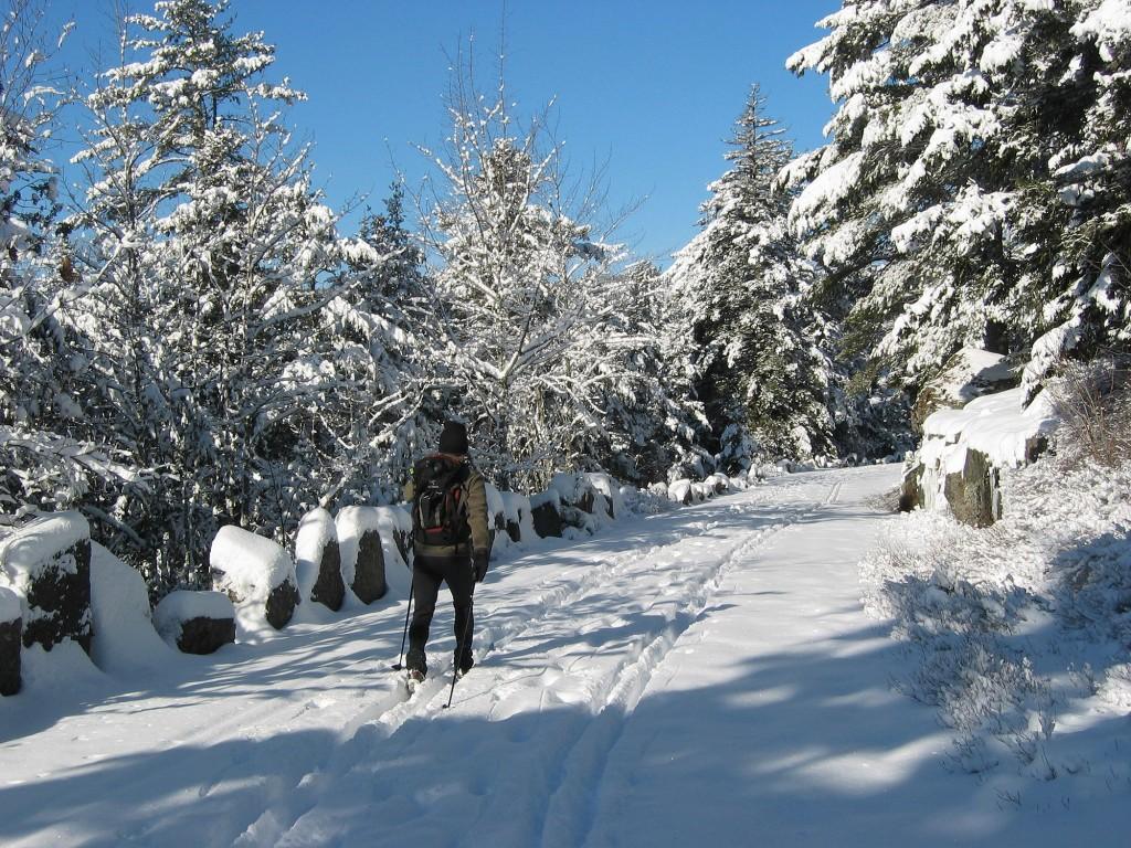 Winter at Acadia National Park. (NPS Photo)