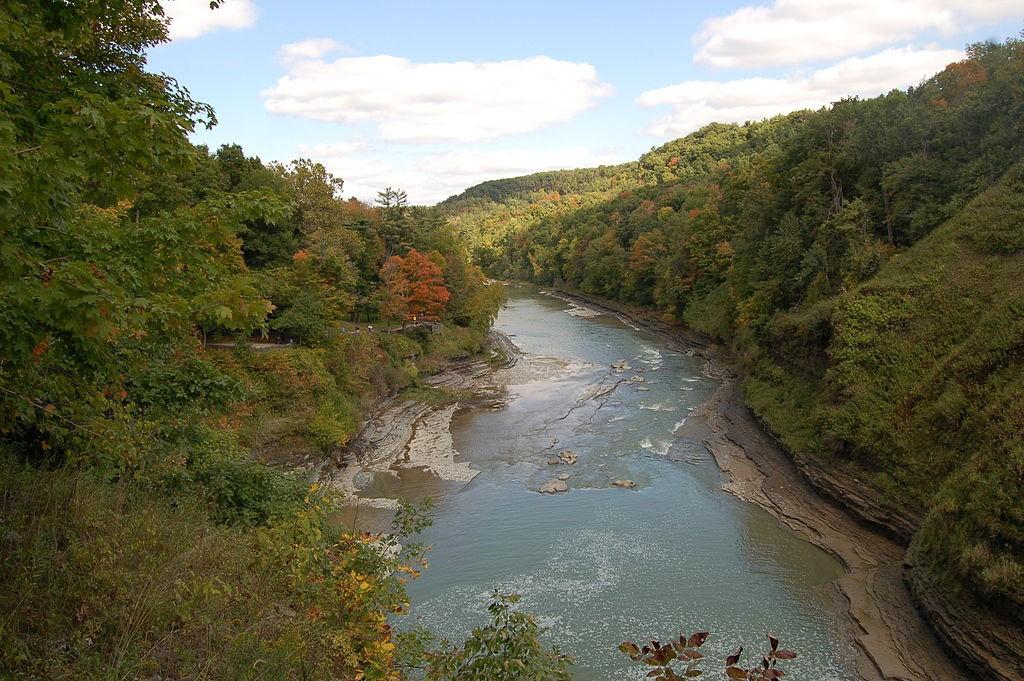 Letchworth - genessee river