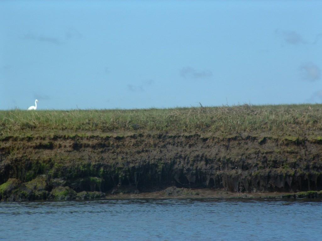 north river may 30 032