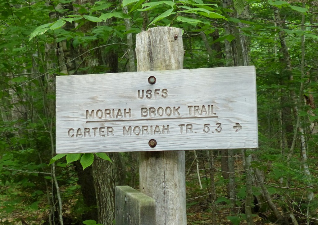 Moriah Brook Trail
