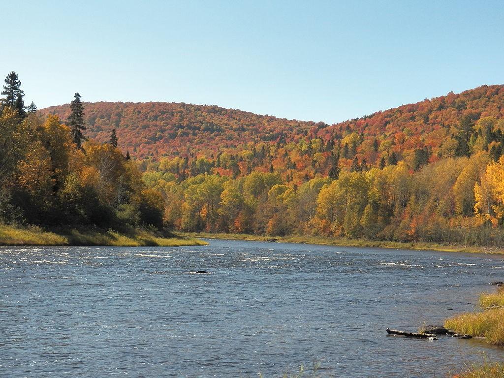 Allagash Waterway Fall