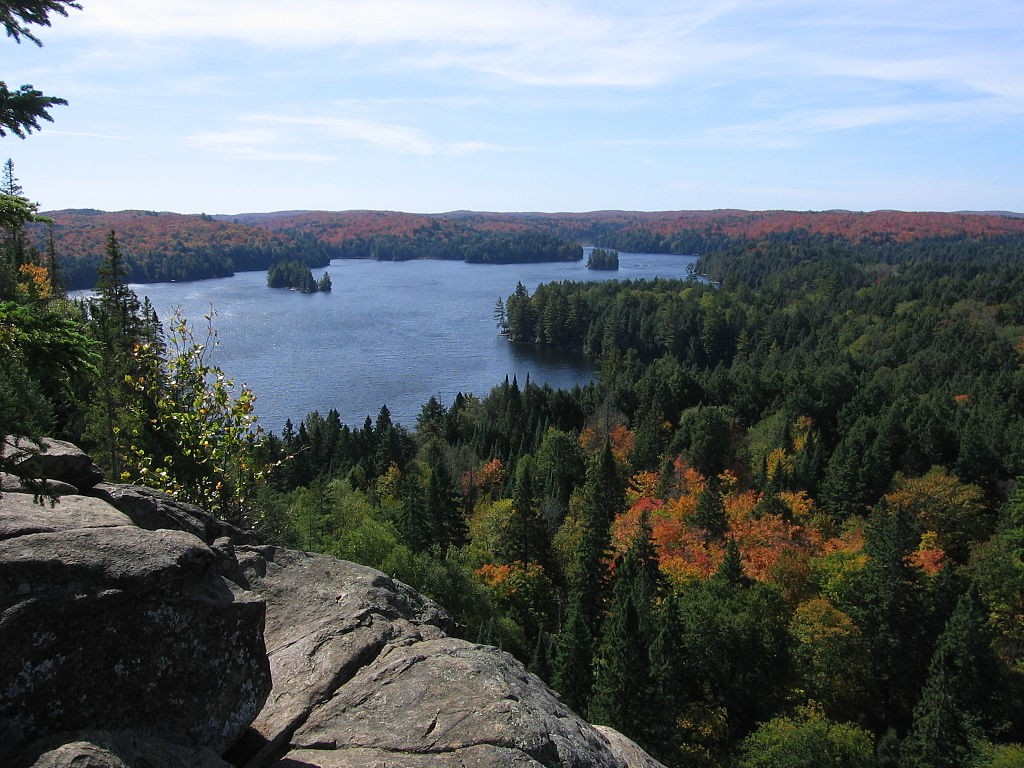 The view from the Cache Lake Lookout in Algonquin Park.
