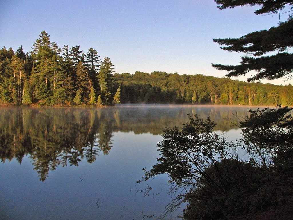 Long Pond in the St. Regis Canoe Area. (Wikimedia Photos)