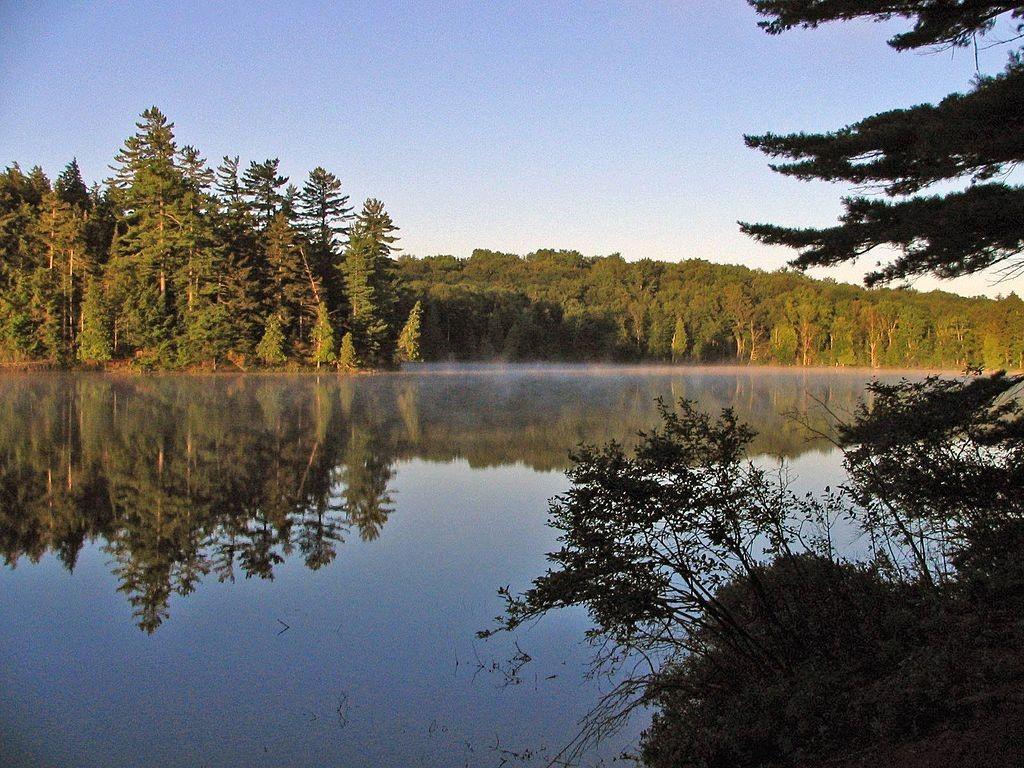 Long Pond in the St. Regis Canoe Area. (Wikimedia Photos)