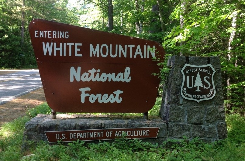 White Mountain NF Sign