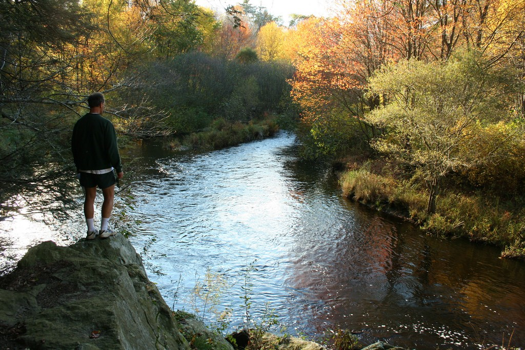 "A man looks over the Neponset River as it flows through Walpole, MA. A ""dead zone"" has been found near the river in Milton. (J A/Flickr Photo)"
