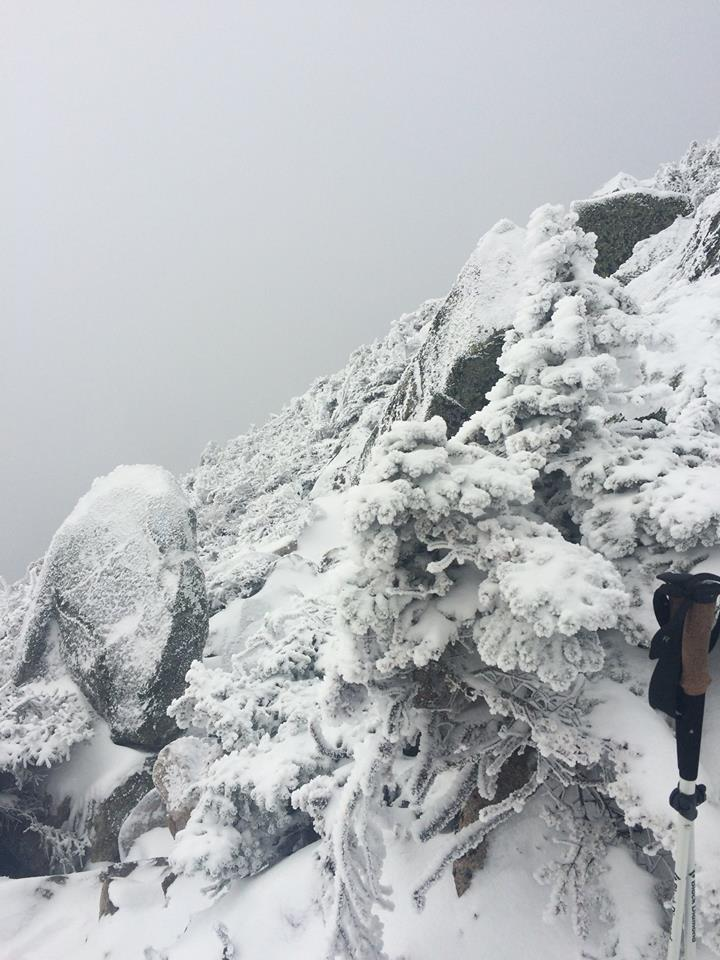 Snowy conditions on the Abol Trail on Katahdin. (Ranger Mike Winslow/Baxter State Park Facebook Photo)