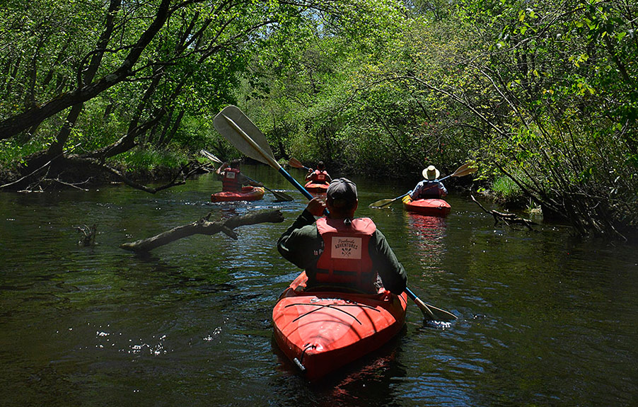 Kayakers on New Jersey's Batsto River. (Pineland Adventures Photo)